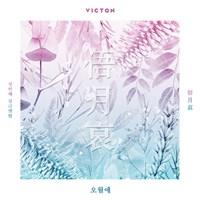 [Под заказ] VICTON - 俉月哀